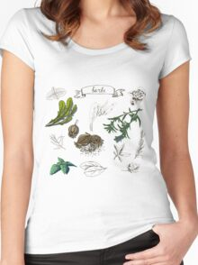 illustration set with hand drawn herbs Women's Fitted Scoop T-Shirt