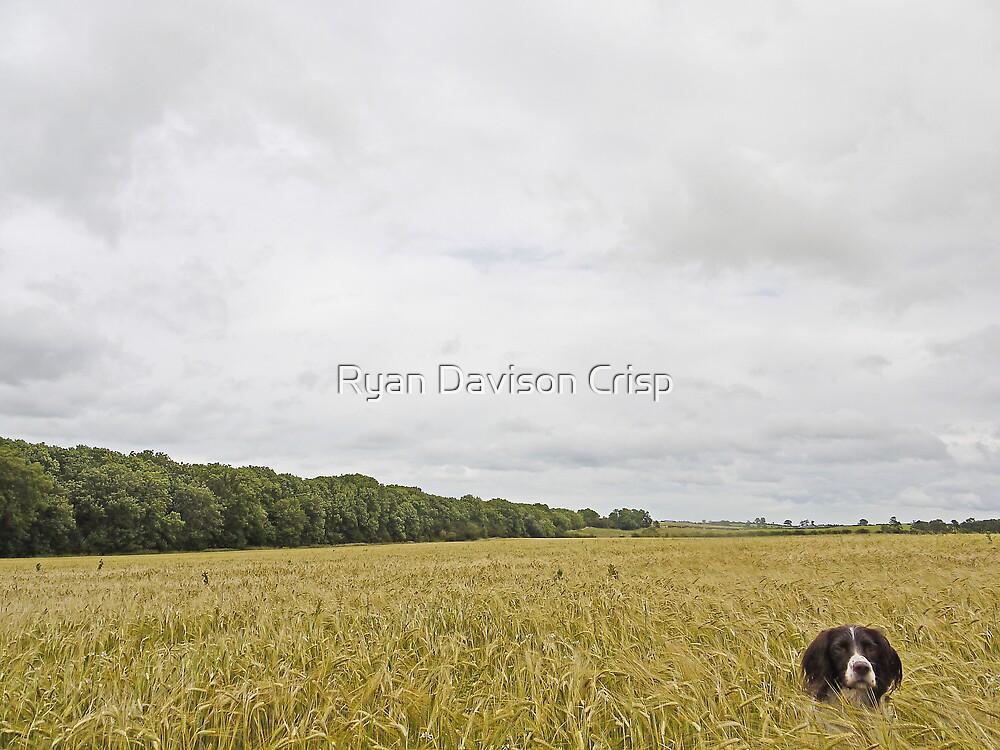 Always Posing by Ryan Davison Crisp