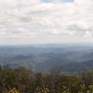Blue Ridge Parkway Series 1 by Edyth Counter-Griffis