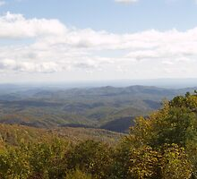 Blue Ridge Parkway Series 2 by Edyth Counter-Griffis