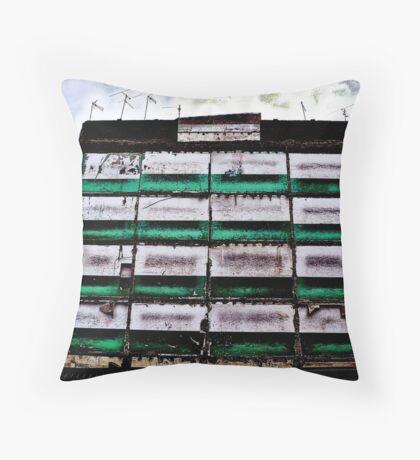 [P1030751 _XnView _GIMP] Throw Pillow