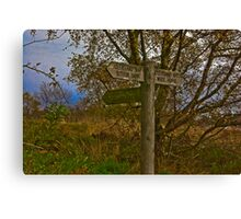 On The Cleveland Way Walk. Canvas Print