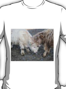 Rocky and Gabriel  21 February 2015 T-Shirt