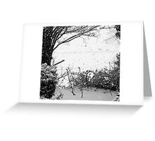 White Candlemas Greeting Card