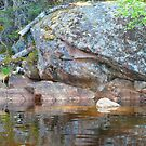 Rocky Reflections by MaeBelle