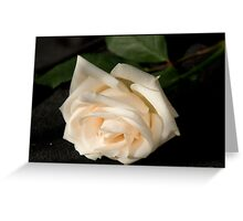 Fallen rose Greeting Card