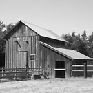 Hay barn by Mark Anthony Carter