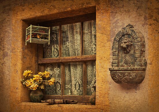 Rosa's Window by Linda Gregory