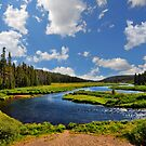 Snake River by Dominic Kamp