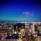 Lower Manhatten from Rockefeller Center by Dominic Kamp