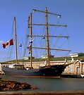Tall Ship Waiting by RC deWinter