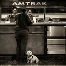 The doggy wants a seat by the window.. by Farfarm