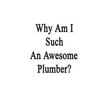 Why Am I Such An Awesome Plumber?  by supernova23