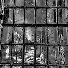 Fractured (Monochrome) - Gladesville Asylum - The HDR Experience by Philip Johnson