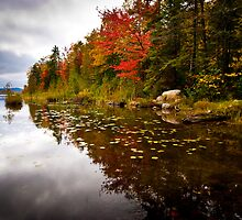 Maidstone Lake in Fall by awgilmore