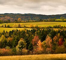 Fall High Meadow Panorama by awgilmore