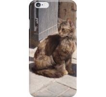 Long Haired Cat iPhone Case/Skin