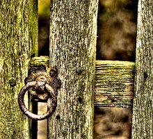 Gate with latch by Kelvin Hughes