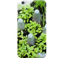 Herb Box iPhone Case/Skin