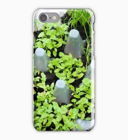 Herb Box iPhone Case/Skin