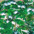 Rain tree flowers watercolour painting by derekmccrea