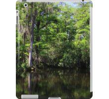 Big Cypress Swamp iPad Case/Skin