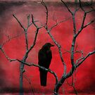 Blackbird In The Red by gothicolors