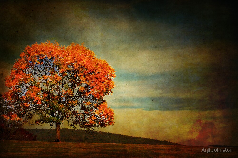 Changes by Anji Johnston