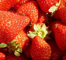 Strawberries sweet, rich and juicy. by tpixx