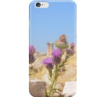 Thistles Amidst Ancient Roman Ruins iPhone Case/Skin