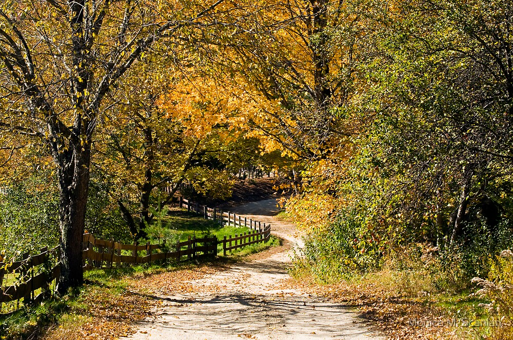 Country Road in Autumn by Monica M. Scanlan