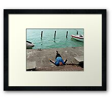 Siesta at Balaton Framed Print