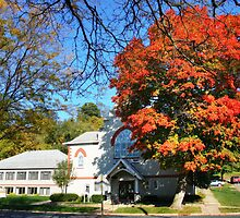 Turning Leaves by Nadya Johnson