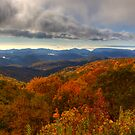 Blue Ridge Parkway by Jane Best by Jane Best