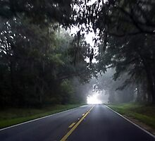 Foggy Morning Drive by Rick  Bender