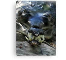 Do not ignore your teeth! Canvas Print