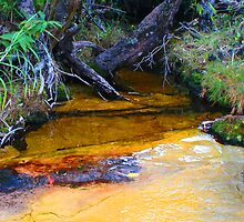 Colourful Creek by DSPhotographics