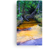 Colourful Creek Canvas Print