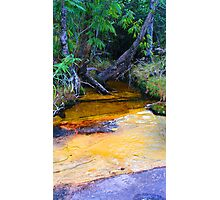Colourful Creek Photographic Print