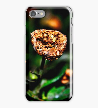 Autumn Whispers Fine Art Print iPhone Case/Skin