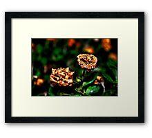 Autumn Whispers Fine Art Print Framed Print