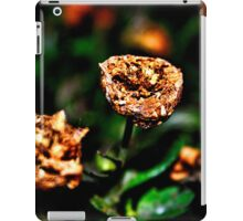 Autumn Whispers Fine Art Print iPad Case/Skin