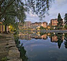 Rhone River View by David Freeman