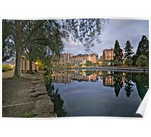 Rhone River View Poster