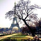 A Parisian dream by faithie