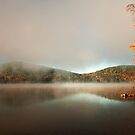 Fire Light by Mary Ann Reilly