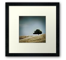 on a hill Framed Print