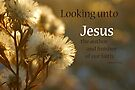 Look Away to Jesus ~ Hebrews 12:2a by Robin Clifton