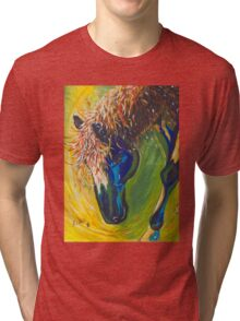 Painted Pony Tri-blend T-Shirt