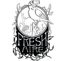 Fresh Aire - White Photographic Print